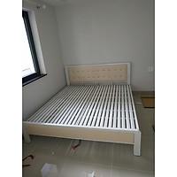 Giường ngủ bằng sắt hộp cao cấp màu trắng có nệm