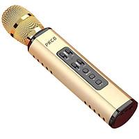 Micro Karaoke Bluetooth Không Dây Kèm loa Chất Lượng PKCB - Hàng chính hãng