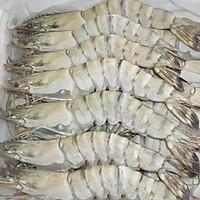[Chỉ Giao Hà Nội] -Tôm sú Quảng Canh-1kg