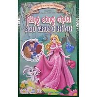 NDB - Truyện cổ tích thế giới hay nhất nàng công chúa ngủ trong rừng