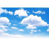 Tranh dán trần bầu trời mây xanh TN70