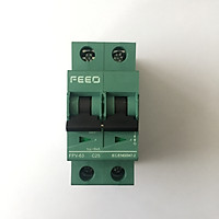 Cầu dao điện một chiều CB DC Bộ ngắt mạch cho Solar Năng Lượng Mặt Trời GIVASOLAR FEEO DC 550V 2P (20A-25A-32A)