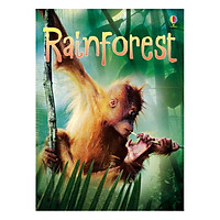 Usborne Rainforests