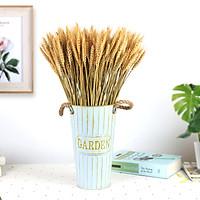 Bó lúa mạch khô tự nhiên 50 bông trang trí phong cách vintage, hoa lúa mì khô phụ kiện chụp ảnh nghệ thuật LM-50