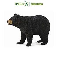 Mô hình thu nhỏ: Gấu Đen Bắc Mỹ - American Black Bear, hiệu: CollectA, mã HS 9651450[88698] -  Chất liệu an toàn cho trẻ - Hàng chính hãng