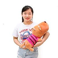 Gấu bông chó Puko dễ thương size 50cm