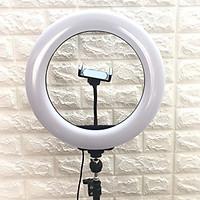 Bộ Đèn Led 34cm hỗ trợ ánh sáng LiveStream - Makeup - chụp ảnh - phun xăm - Tặng kèm cáp sạc HAVIT chính hãng