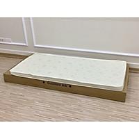 Giường nhựa cao cấp Holla, bằng nhựa nguyên sinh, dùng cho bé từ sơ sinh đến 10 tuổi, chịu lực 50 kg, thiết kế an toàn cho bé