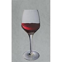 Bộ 6 ly uống rượu vang pha lê Glass 420 ml ( Châu âu )
