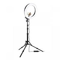 Bộ đèn Led HD Ring RL18 makeup, quay phim ,chụp ảnh, livetream RE0339