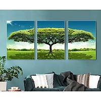 Bộ tranh treo tường phong thủy trang trí nội thất thị trường ĐL 57
