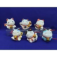 bộ 6 chú mèo chiêu tài 502