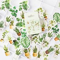 Hộp 45 Miếng Dán Sticker Trang Trí  Khu Vườn Nhỏ