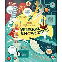 Usborne Big Picture Book of General Knowledge