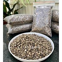 Đá bọt Pumice cực tốt cho sen đá, cây kiểng - size 3-6mm, gói 1kg