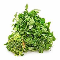 Hạt giống rau cải xoong