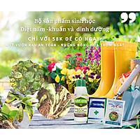 Combo sản phẩm sinh học phòng trừ nấm, khuẩn và dinh dưỡng cho rau, hoa, hoa lan