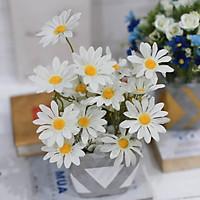 Hoa giả chậu cúc trắng cắm sẵn trang trí bàn văn phòng
