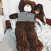 Thú bông Gấu Teddy màu nâu đen siêu to khổng lồ - Khổ vải 1M8 cao 1M6