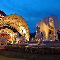 Vé Tham Quan Chiang Mai Night Safari, Thái Lan Night Safari Tour + Xe Đưa Đón