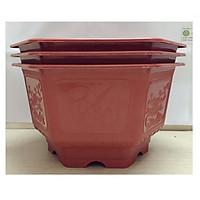3 Chậu Nhựa Trồng Hoa, Cây Cảnh Lục Giác AFC :TH-250