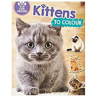 Kittens to Colour: 50 Cute Stickers