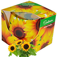 Ly nến thơm tinh dầu Admit Sunflower 100g QT026987 - hoa hướng dương