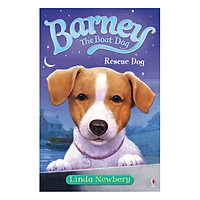Usborne Young Fiction Barney the Boat Dog: Rescue Dog