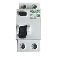 Cầu dao chống giật Schneider RCCB - Aptomat chống giật từ 25A đến 63A chính hãng