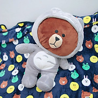 Gối mền thú bông gấu Brown mặc áo Totoro - Xám