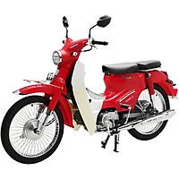 Xe Máy 50cc Cub 50 Classic Ally Korea (Đèn LED)