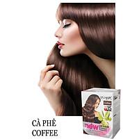 Dầu Gội Nhuộm Tóc Thảo Dược US Hair (Combo 3 hộp)