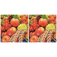 Combo 2 Xấp Khăn Giấy Ăn Trang Trí Bàn Tiệc Tissue Napkins Design Ti-Flair 342005 (33 x 33 cm) - 40 tờ
