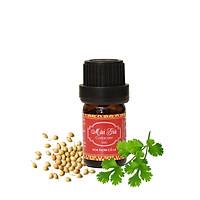 Tinh dầu Mùi già - Coriander Essential Oil - Hoa Thơm Cỏ Lạ