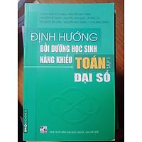 Sách Định hướng Bồi dưỡng HS Năng khiếu toán tập 1: Đại số - Sách tham khảo