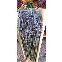 Bó hoa khô hoa lavender 130g  tặng kèm túi thơm P01