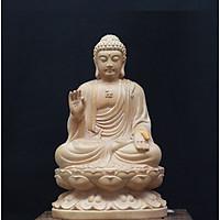 Tượng Phật A Di Đà - Gỗ Hoàng Dương cao 12cm