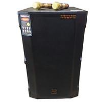 Loa kẹo kéo karaoke bluetooth Temeisheng GD1513 - Hàng nhập khẩu