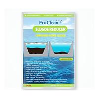 EcoClean Sludge Reducer - Men Vi Sinh Xử Lý Bùn Đáy Ao Nuôi Tôm, Cá - Gói 100g