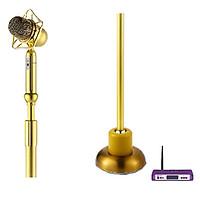 Micro đứng LINGRUI YR-W cao cấp nhập khẩu, màu vàng sang trọng cao cấp dành cho sân khấu, karaoke VIP, âm thanh chuyên nghiệp chính hãng