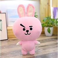 Gấu bông ,gấu EXO BTS Joongkook BT21- BTS (hồng)  size lớn 45cm