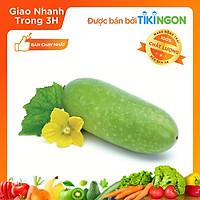 [Chỉ giao HN] - Bí xanh (1.6kg - 1.8kg) - được bán bởi TikiNGON - Giao nhanh 3H
