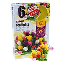 Hộp 6 nến thơm tinh dầu Tealight Admit Tulips QT026054 - hương hoa tulips