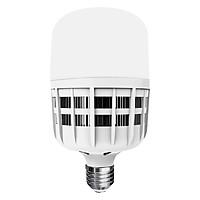 Bóng Đèn Led Bulb Công Suất Lớn Điện Quang ĐQ Ledbu09 25765 (25W Daylight)