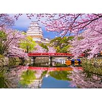 Tranh ghép hình 1000 mảnh 2cm khổ 54×74 – Tranh xếp hình Puzzle cao cấp lâu đài Himeji – Himeji Castle's