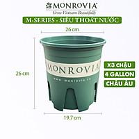 3 Chậu nhựa trồng cây MONROVIA 4 Gallon, Dòng M-Series, chậu trồng cây, chậu cây cảnh mini, để bàn, treo ban công, treo tường, cao cấp, chính hãng thương hiệu MONROVIA