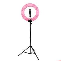 SLPR460 | Đèn Livestream Led Ring 20inch 80w (50cm) / HÀNG CHÍNH HÃNG