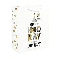 Túi quà giấy sinh nhật cao cấp