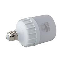 Bóng đèn led bulb trụ 30W Rạng Đông, Model LED TR100N1/30W