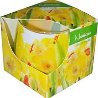 Ly nến thơm Admit ADM5457 Narcissus 100g (Hoa thủy tiên vàng)